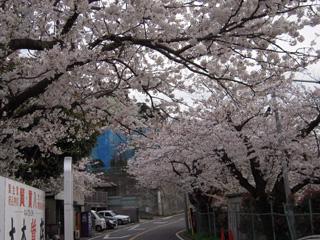 0904-鎌倉山.jpg